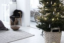 Winter & Christmas / c o z y