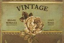 Vintage/Victorian/Very Old/Edwardian/Ephemera / by Sheila