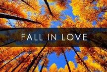 Fall / Good things come in Fall packages.