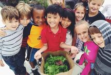 Farm to School / Farm to school enriches the connection communities have with fresh, healthy food and local food producers by changing food purchasing and education practices at schools and preschools.