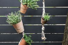 DIY Gardening / Make your own gardens, have house plants, grow vegetables and herbs | Green living inspiration.