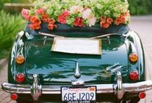 Vintage Cars / by Kelly Golightly