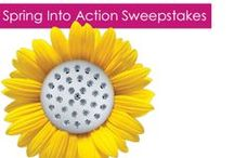 Danze Spring Into Action Sweepstakes / It's spring and change is in the air, so we are giving away a $500 Danze shopping spree to help you with your spring upgrades! / by Build.com