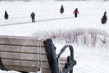 Winter - Xmas*