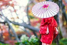 Japanese umbrella 和傘