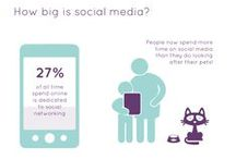 Social Media research / The statistical world of Social Media - research and presentation for Estate Agent client