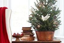 CHRISTMAS TREE ENVY