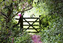 Garden and Flowers / tableau sur le thème du jardin, du jardinage, des fleurs, des plantes, des plantations, jardin potager, etc Garden, gardening, flowers...