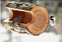 birdseed bird house