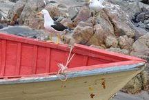 Barcos, Cais e Piers