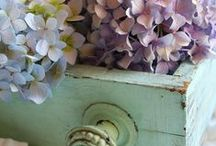 shabby is beauty! / shabby is the way i want to live with...!and to feel for..!!