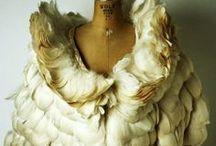 Penas e plumas