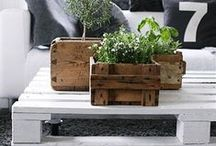 Pallets, caixotes e caixas de madeiras