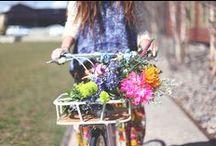 Primavera | Spring