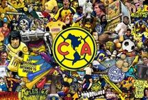 ¡Yo te llevo en el corazón! / Imágenes dedicadas al mejor club de fútbol en México, el Club América.