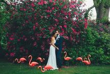 Real Wedding: An Eclectic Dream filled with Colour Love. / This couple proved that love is a million colours as they created a day full of summer brights and off beat treats.