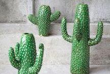 Cactus day / Para celebrar el día espinoso...