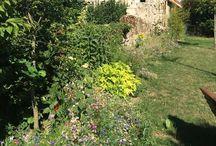 Fleurissement et jardinage / Les photos d'auger