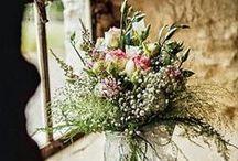 anne' s  flowers / fleurs