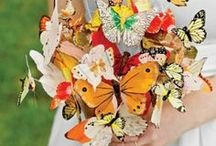 Love Filled With Butterflies / Butterflies...beauty and elegance.