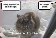 Funny :p