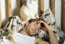 hombres y gatos