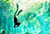 Deep Down Under / Underwater awesomeness #sea #ocean #river #pond #water