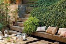 garden|exterior