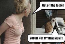 Ooh funny