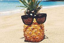 Summer / Summer & holidays