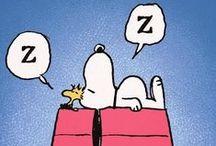 For the Love of Sleep!