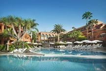 I Love Hotels / La fantástica vida dentro de un hotel <3
