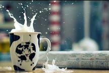 Milk and Cookies / We LOVE Milk! / by Winder Farms