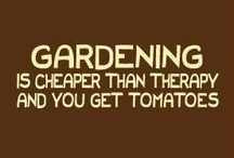 Gardening & Outdoor Living / grow, craft, and love the entire process!! / by Kat Trubey