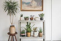 En 40 kvadrat med balkong och soderlage tack / by Alexandra Arvidson