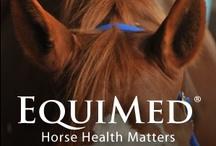Horse Health / by Leslie Bowen