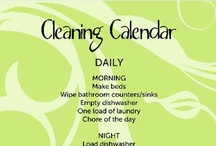 Cleaning tips & ideas / by Amie Sikirica