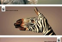 Ad # Art Direction