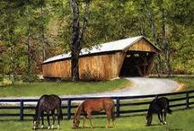 Covered Bridge Beauty / Charming and beautiful. Covered bridges are full of nostalgia, wonder and can bring a smile to anyone's face. Pin your best covered bridge pics/info. No spam please.  If you would like to join one of my boards, please visit my main page. / by I Am Country