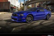 Mustangs / by TK
