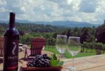 Wineries and Vineyards in North Carolina / During your visit at Butterfly Creek Inn, check out these local wineries.