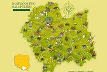 Małopolska - mapy, plany, infografiki