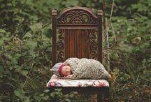 newborn and family photography / by Cori Lovato