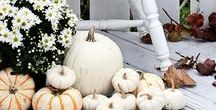 Home decor ideas / Lovely ideas to decorate our homes and houses including seasonal and holiday tips