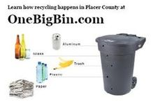 Recycle / Recycling options for individuals and for businesses