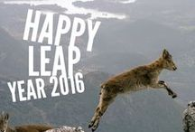 Leap Day and Leap Year Fun / Leap Day and Leap Year Fun 2016 - It'll be 4 more years before we can do this again :)