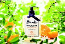 Soin du corps & des mains / La fleur de savon, qu'est ce que c'est? La base de ce savon est issue d'une saponification d'huile végétale d'origine naturelle. Egalement riche en saponaire, plante à la vertu hydratante, nous obtenons le meilleur du savon et le plaisir d'un soin.