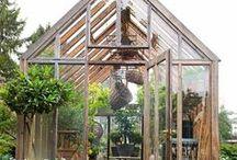 Gorgeous Greenhouses