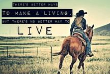 Horses / I am addicted to the horse life. This is the board for all things horses! / by Leanne