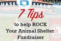 Nonprofit Fundraising / nonprofit, non profit, fundraising, donations, donate money, raise money, grant writing, grant awards, fund raise